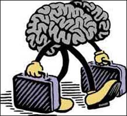 Утечка мозгов компьютерных специалистов продолжается