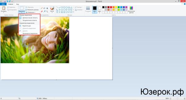как вырезать изображение в paint