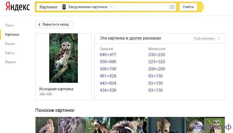 Яндекс картинки сделать для вас пережили ледниковый
